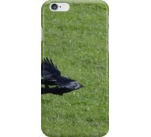 Jackdaw Squadron iPhone Case/Skin