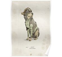 Real Life Goofy - Natural History Variant Poster