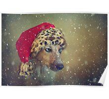 stella by snowfall Poster