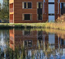 Modern buildings on the lake by mrivserg