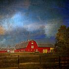 Wonder of the Barn by PineSinger