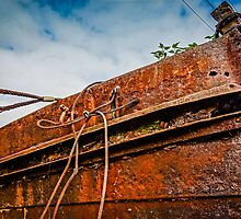 Rusting glory by Beverley Goodwin