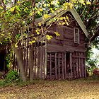 Old Weather Wood House by Tina Hailey