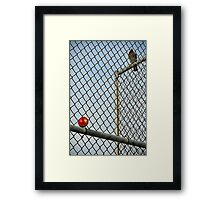 On the Other Side of the Fence Framed Print
