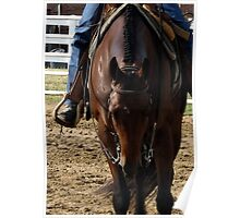 Quarter Horse Warming Up Poster