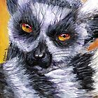 Ring-tailed Lemur by Cantus