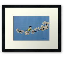 Great Tit on Cherry Framed Print