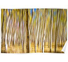Surreal Aspen Tree Abstract Poster