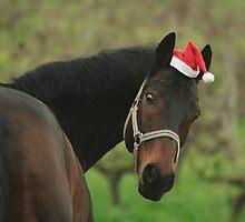 Merry Christmas! by cicika