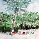 beach palm tree by derekmccrea