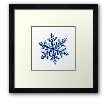Relief snowflake 1 Framed Print