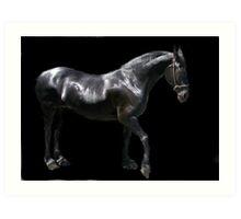 friesian HORSE~~  (dedicated to Ann E Chapman) Art Print