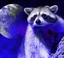 Raccoon Dream by jkartlife