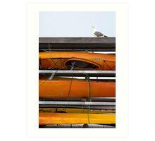 Seagull and Kayaks at AT&T Park San Francisco Art Print