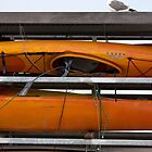 Seagull and Kayaks at AT&T Park San Francisco by studiojanney