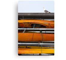Seagull and Kayaks at AT&T Park San Francisco Canvas Print
