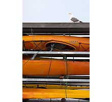 Seagull and Kayaks at AT&T Park San Francisco Photographic Print