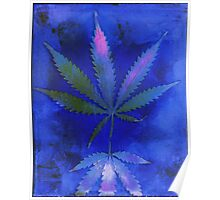 Hemp Lumen #2  Marijuana, Cannabis Poster