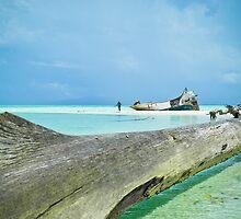 Rani Island - Biak, West Papua by Stephen Permezel