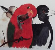 'KOOKY, KING PARROT, MAGPIE' by jansimpressions