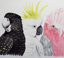 ' COCKIES & GALAH' by jansimpressions