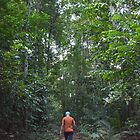 Jungle Trek by ky2890