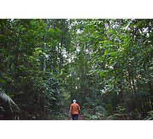 Jungle Trek Photographic Print