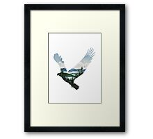 Eagle - Alaskan Animals Collection Framed Print