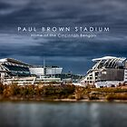Paul Brown Stadium by Thomas Gehrke