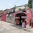 Street Corner by dozzam