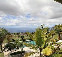 Patty Sadler Realtor - Maui mls Listings by Patty723