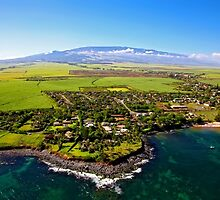 Patty Sadler Realtor - Top Maui Realtor by Patty723