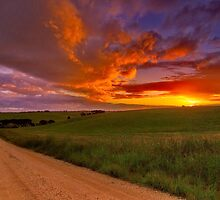 """Barrabool Sundown"" by Phil Thomson IPA"