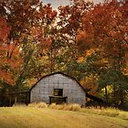 Autumn Barn by Jai Johnson