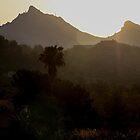 Sunrise II by Adrian Harvey