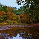 Steel Bridge over Pruitt's Landing by Lisa G. Putman