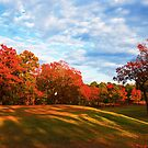 Golf Course at Burns Park by Lisa G. Putman