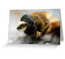 Bee. Greeting Card