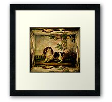 Spaniel and the Butterfly Framed Print