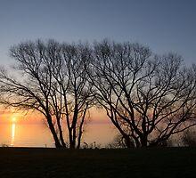 November Sunrise on Lake Ontario in Toronto, Canada  by Georgia Mizuleva