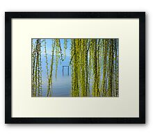 Natural curtain @ Lake Kerkini Framed Print