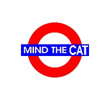 Mind the Cat Photographic Print