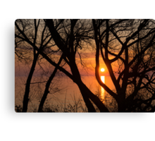 Sunrise Through the Willows - Lake Ontario, Toronto, Canada  Canvas Print
