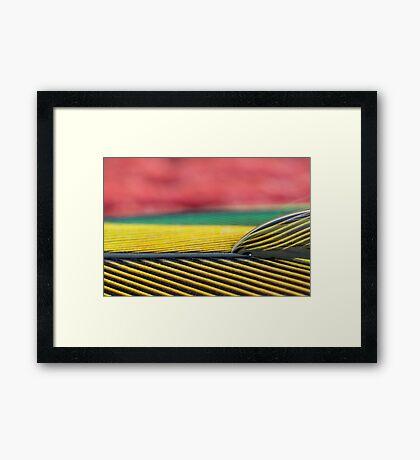 Parrot Pattern Framed Print