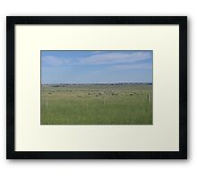 High Spots Framed Print