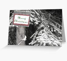 Splash of Color Christmas Card  Greeting Card