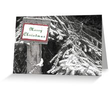 Splash of Color Christmas Card  Greeting Card
