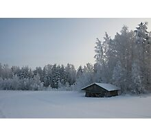 Winter Day Photographic Print