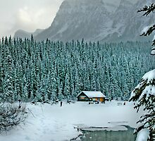 Winter Wonderland 3 by Danielle Girouard