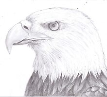 Bald Eagle by Mengtastic